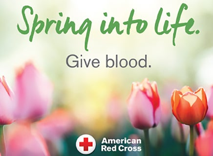 More Info for BLOOD DRIVE